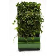 Автономная система озеленения зеленая стена Green Helper GWA-20